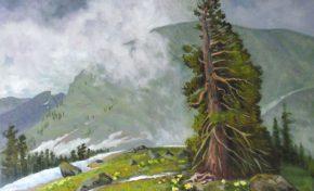 В Красноярске открылась выставка Владимира Набокова