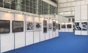 В Красноярске завершилась работа художественной выставки «Родина – Сибирь»