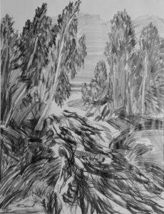 Бирюков М.М. Горный ручей. 2012 г. Бумага, карандаш. 60х49 см.
